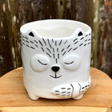 Cute Hedgehog Planter