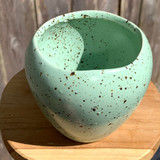 Mint Chocolate Egg Shell Planter