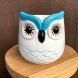 Cute owl planter