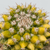 Mammilaria nejapensis variegata