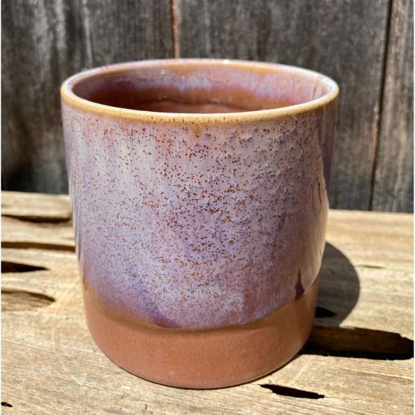 Desert Rose Cylinder Planter