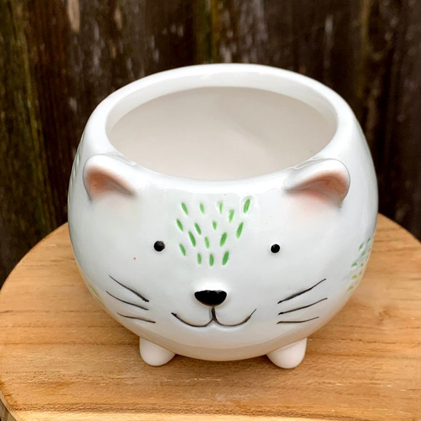 Cute Cat Planter