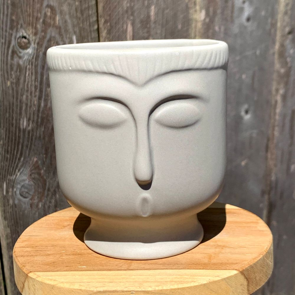 Dove Grey Face Planter