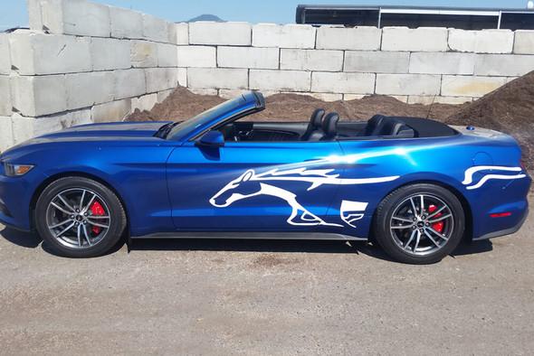 2015-21 Mustang Stallion Stripes