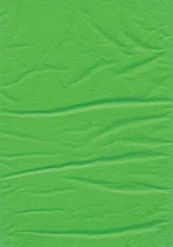 Tissue Paper 60 Sheets/Pack 500x750mm LIGHT GREEN