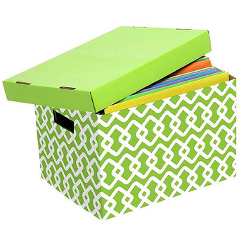 Marbig Archive Box Lime Pattern Box 10