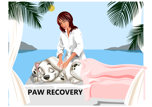 Pawcovery is a massage oil or used as a liniment for dogs. is designed to heal and reduce inflammation in your dog's joints and muscles. It can be used on arthritic hips, limping legs, pulled muscles or tendons, and stiffness found throughout the body.