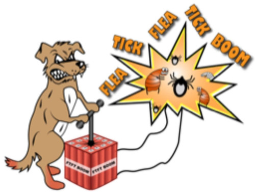 Fleas and ticks can't stand to be around essential oils of Tea Tree, Lavender, Geranium, and Citronella. If your dog has a lot of fleas or in a high tick area you'll want to use Tick Flea. Tick Flea BOOM Spritz all over them until you have the infestation under control .