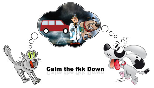 Calm The FKK Down