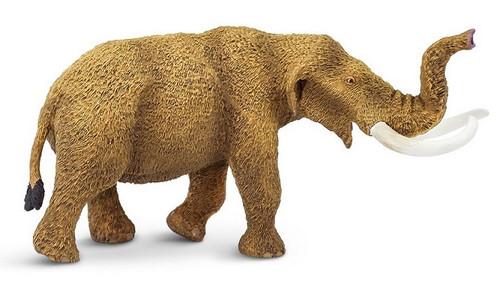 Mastodon by Safari