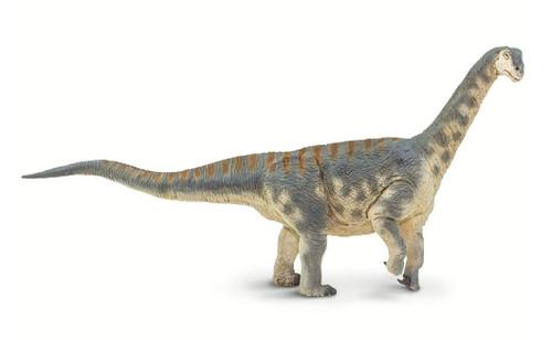 Camarasaurus by Safari