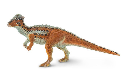 Pachycephalosaurus by Safari