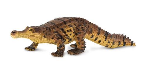 Sarcosuchus by Safari