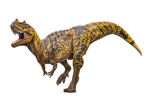 Ceratosaurus by PNSO