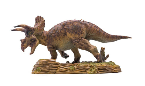 Triceratops Model by PNSO