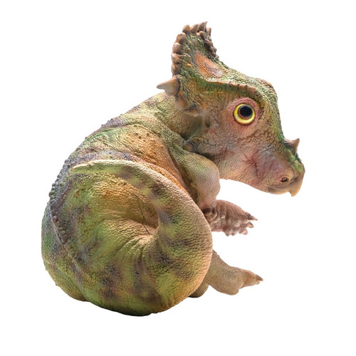 Sinoceratops Cub by PNSO