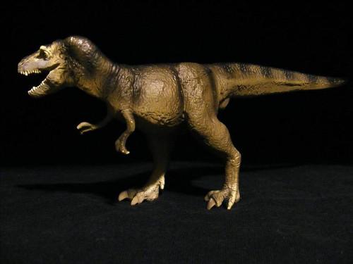 Albertosaurus by Carnegie