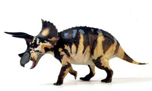 Triceratops Subadult by Beasts of the Mesozoic
