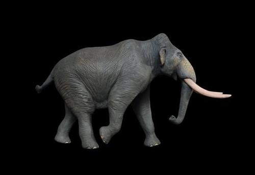 Pygmy Mammoth Resin Kit by Lu Feng Shan