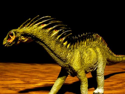 Amargasaurus by Carnegie