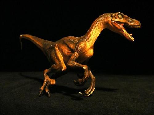 Velociraptor by Wild Safari