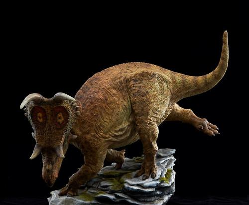 Diabloceratops Resin Kit by Musee Studio