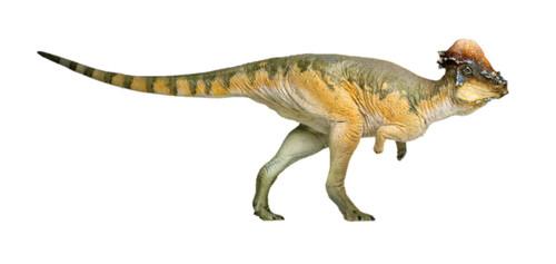 Pachycephalosaurus by PNSO