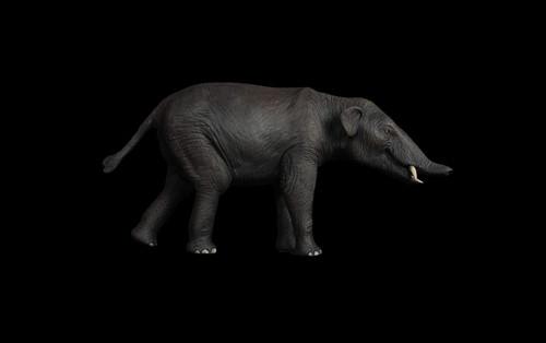 Palaeomastodon Resin Kit by Lu Feng Shan