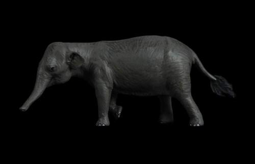 Palaeoloxodon Female Resin Kit by Lu Feng Shan