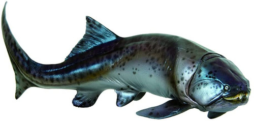Dunkleosteus by PNSO