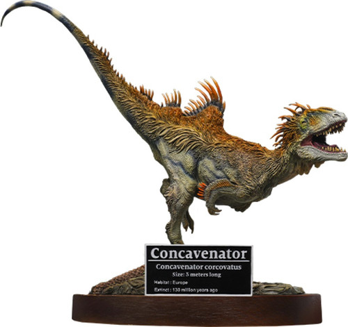 Concavenator by Wonders of the Wild