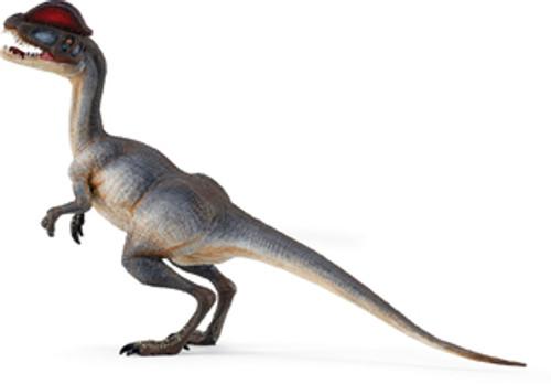 Dilophosaurus by Wild Safari