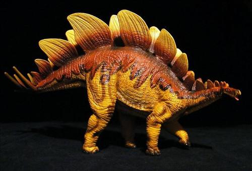 Stegosaurus by Wild Safari