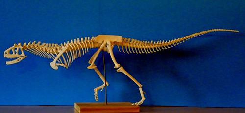 Carnotaurus Skeleton Resin Kit by Desert Dinosaurs