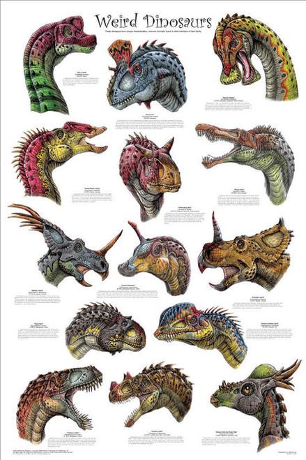 Weird Dinosaurs Poster