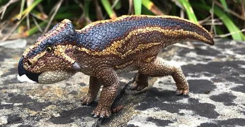 Leptoceratops Resin Kit by Kazaryan