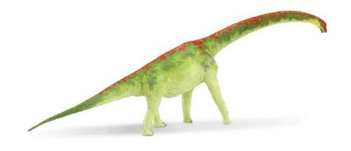 Brachiosaurus by Carnegie