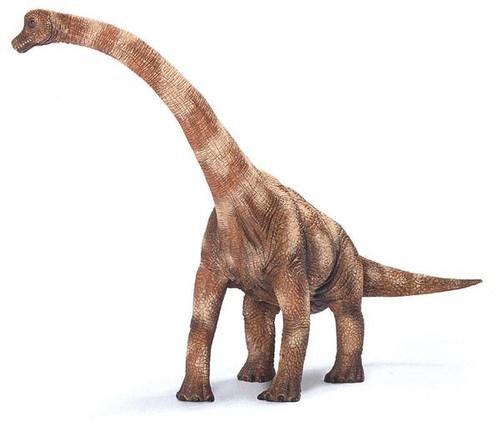 Brachiosaurus version 2 by Schleich