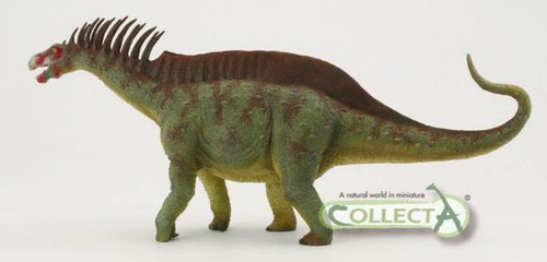 Amargasaurus Deluxe by CollectA