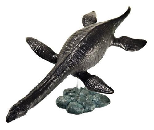 Plesiosaurus by Favorite