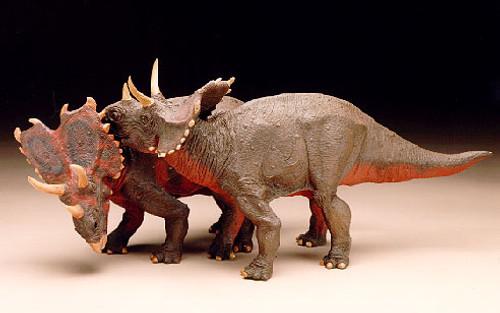 Agujaceratops Pair 1:10 Resin Kit by Dan LoRusso