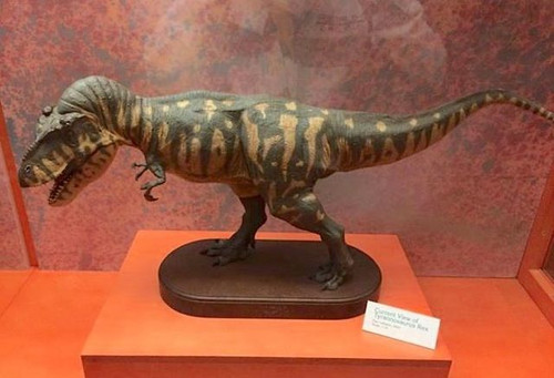 Tyrannosaurus 1:10 Resin Kit by Dan LoRusso