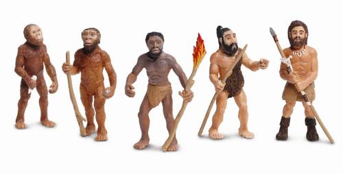 Evolution of Man by Safari