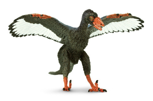 Archaeopteryx by Safari