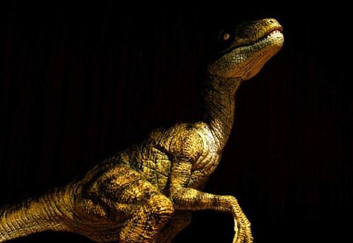 Velociraptor (2005 version) by Papo