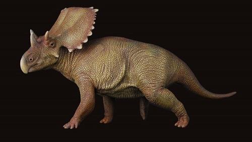 Chasmosaurus Resin Kit by Lu Feng Shan
