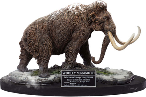 Woolly Mammoth by Wonders of the Wild