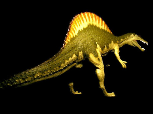 Spinosaurus by Carnegie