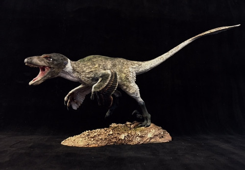 Deinonychus Finished Model by Dan's Dinosaurs