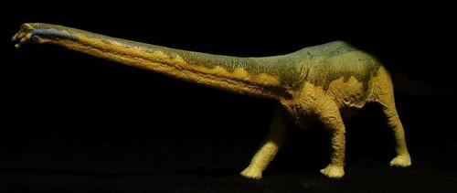 Diplodocus by Carnegie